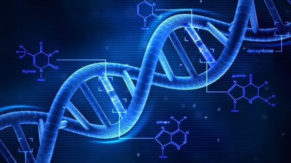 ڈی این اے ٹیسٹ کیا ہے اور کیسے کیا جاتا ہے؟