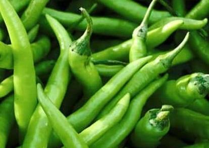Tabasco Pepper and its benifits Hari Mirch Green Chilli ke fawaid in Urdu Hindi
