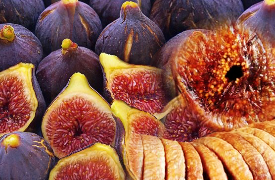 Anjeer or Common fig and its benifits in Urdu Hindi