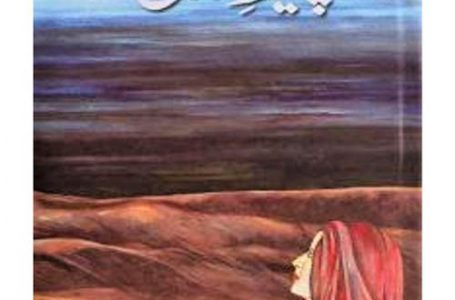 Peer-e-Kamil Novel By Umera Ahmad Urdu Hindi PDF book Free Download online