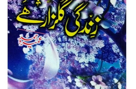 Zindagi Gulzar Hai Novel By Umera Ahmad Urdu Hindi PDF book Free Download online